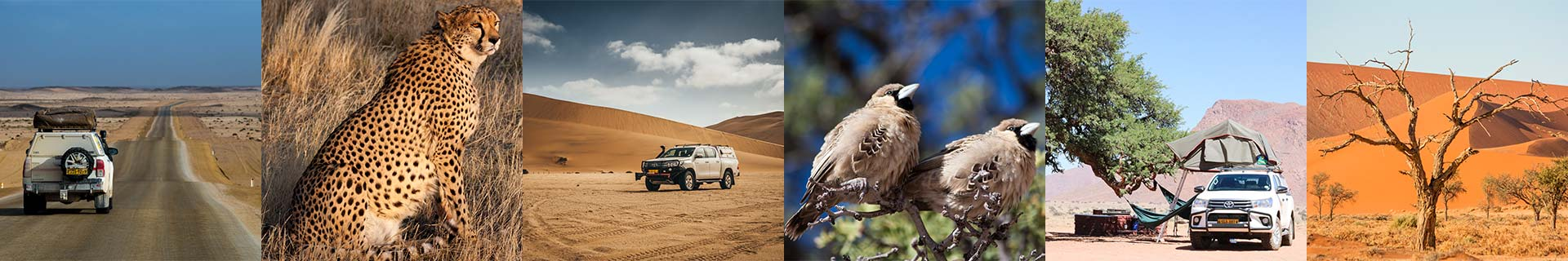 Autohuur-Namibie-Toyota-Hilux-2.4TD-4x4-Single-Cab-2pax_footer